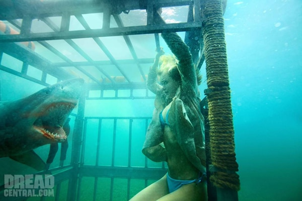 New Shark Night 3D Image Looking to Put the Bite On!