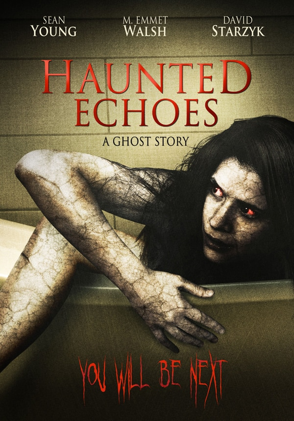 DVD Details: Haunted Echoes