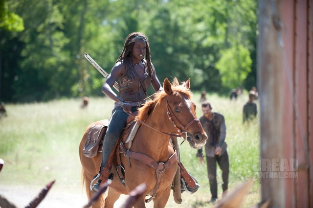 The Walking Dead: Recap of Episode 4.02 - Infected - Michonne