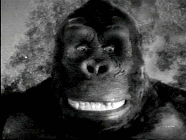 King Kong Gets Animated to Tell His Side of the Story
