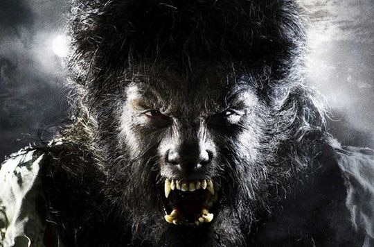The Wolfman Transforms into the Werewolf for Universal