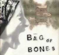 Promo Posters for A&E's Bag of Bones Adaptation