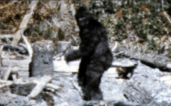 Eduardo Sanchez to Prove Bigfoot Exists