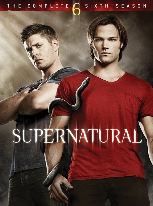 Supernatural Season Six DVD/Blu-ray Cover Art