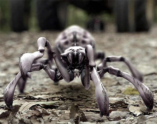 A Sneak Peek of the Arachnoquake Spider