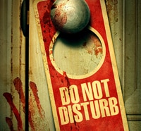 Do Not Disturb Hits DVD in August