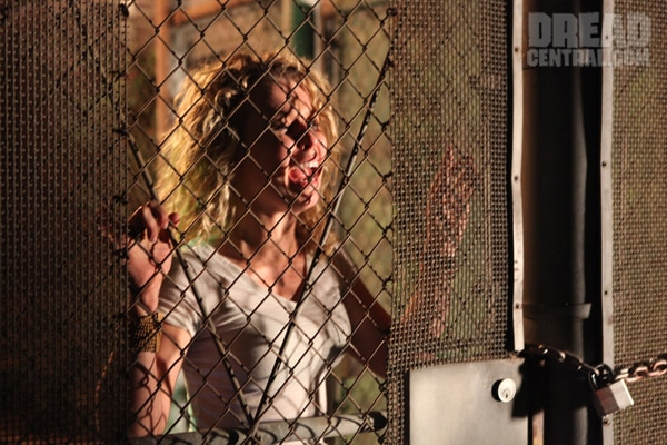 Exclusive Trailer, Stills and More from Paranormal Incident (click for larger image)