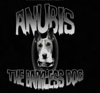 Anubis the Barkless Dog Fends Off Paranormal Activity