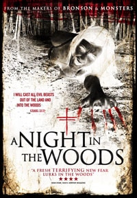 a-night-in-the-woods-poster-s.jpg