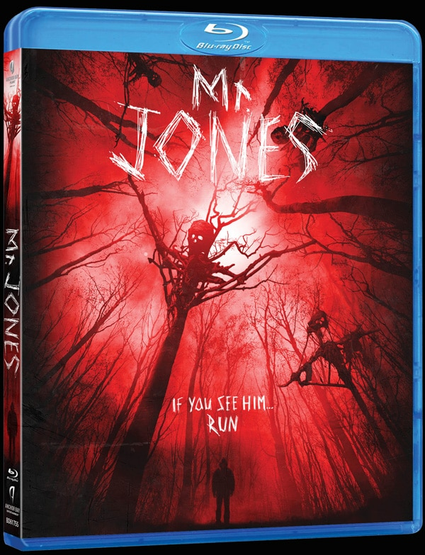 mr-jones-blu-ray.jpg