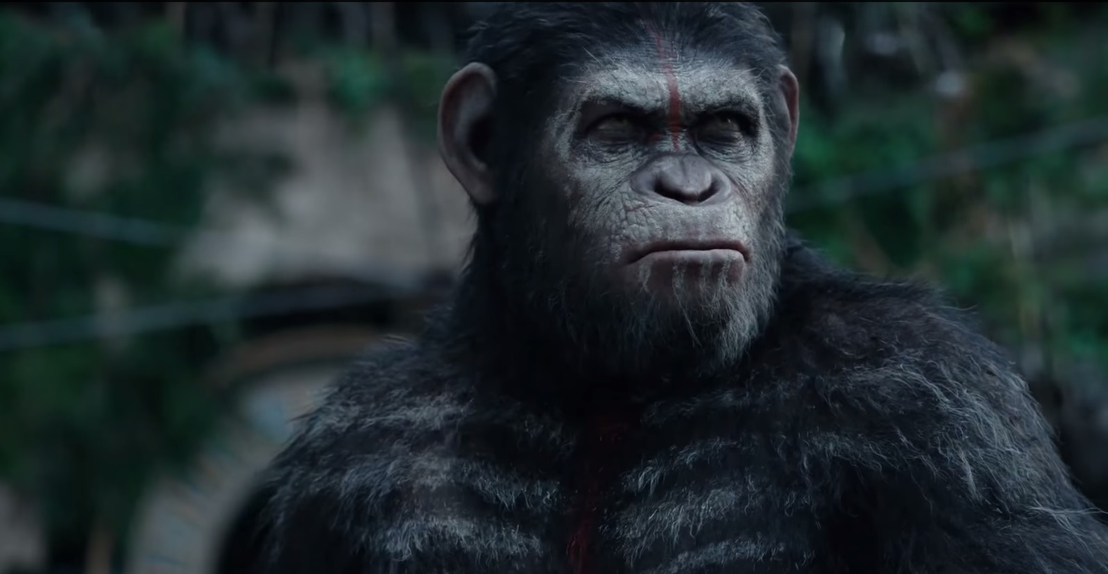 dawn of the planet of the apes andy serkis as cesar - Andy Serkis Talks the Future of the Planet of the Apes