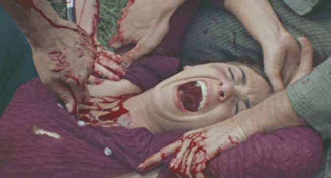 last house on the left - NSFW - The 13 Most Entertaining Video Nasties