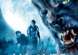 WOLVES_Competition_Image