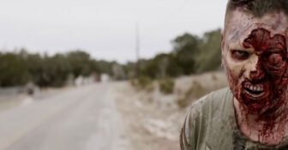 the walking deceased 7 336x158 - The Walking Deceased Trailer Shambles In