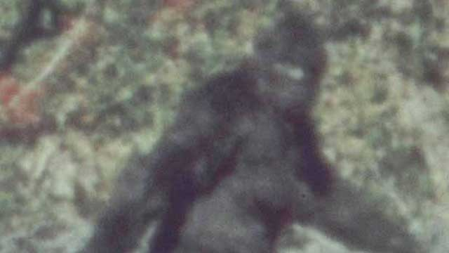 bigfoot - Top 10 Bigfoot Movies of the 21st Century