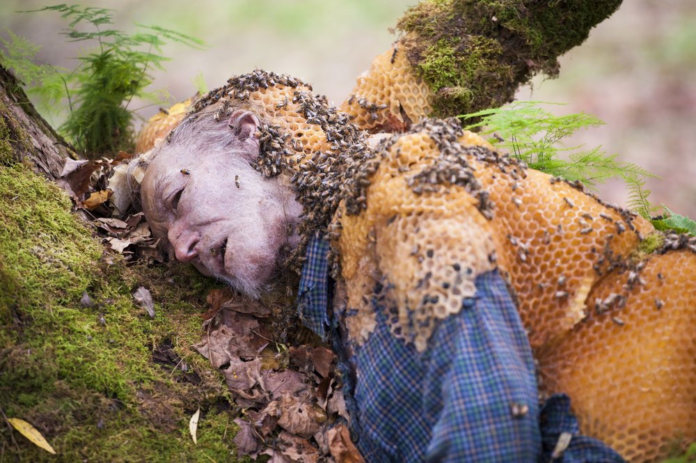 bees - The 8 Most Creative Killers From NBC's Hannibal