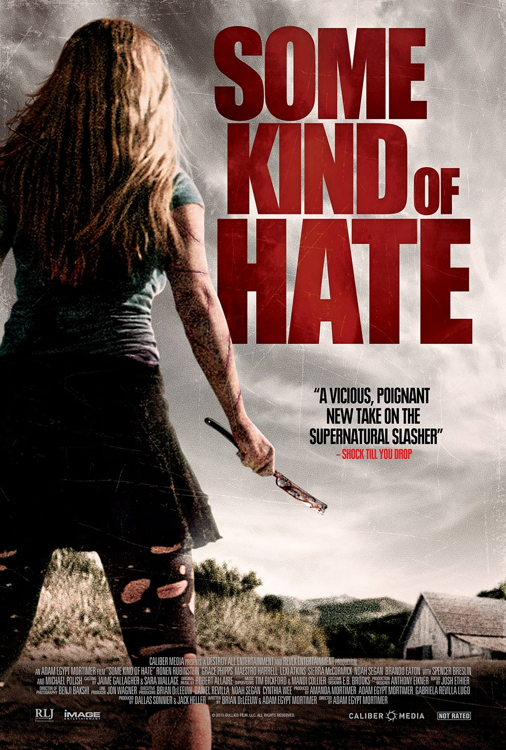 some kind of hate poster