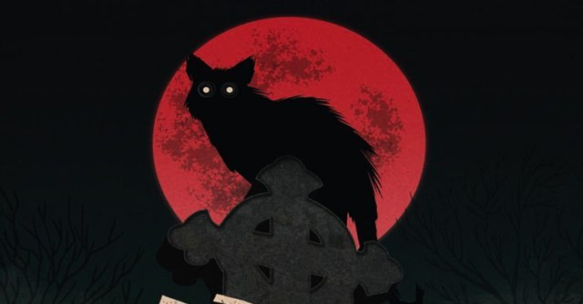 Black Cat The s 1980 - Black Cat, The (Blu-ray)