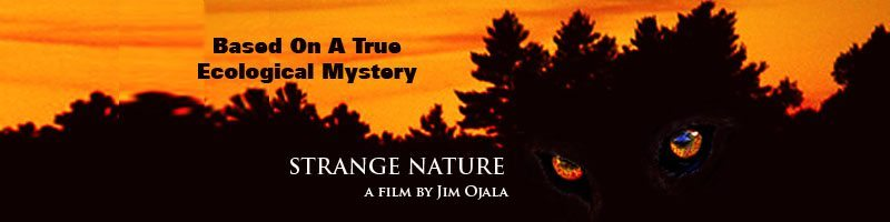 Strange Nature 1 - Exclusive: Director Jim Ojala Talks Strange Nature