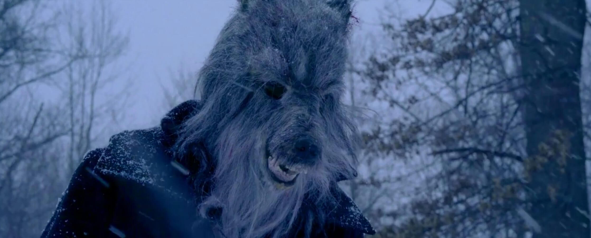 The Wolf Family Treasure wolf snow 1 - A Trailer Searches for The Wolf Family Treasure