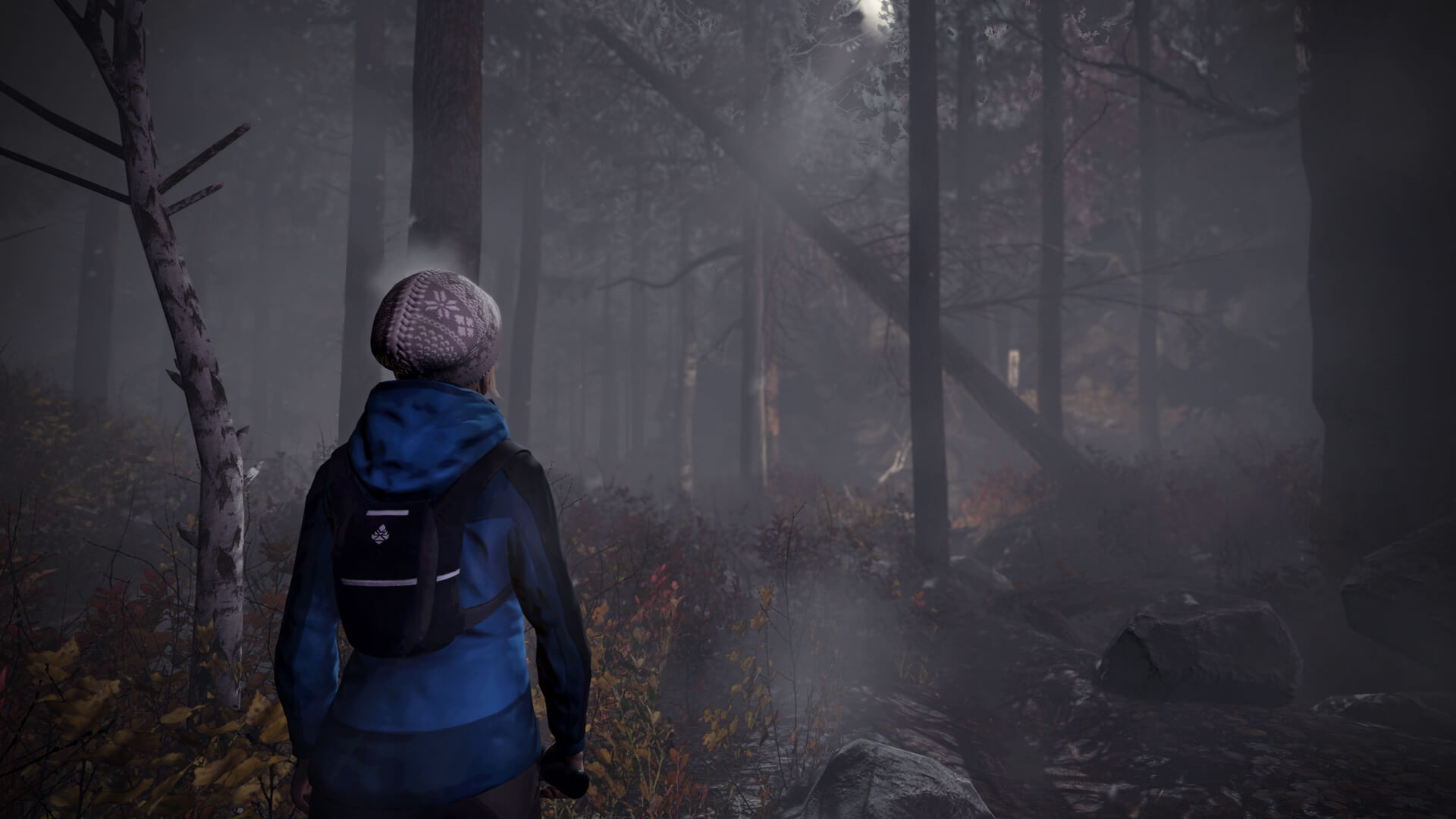 through the woods 1 - Upcoming Horror Game Will Take You Through the Woods