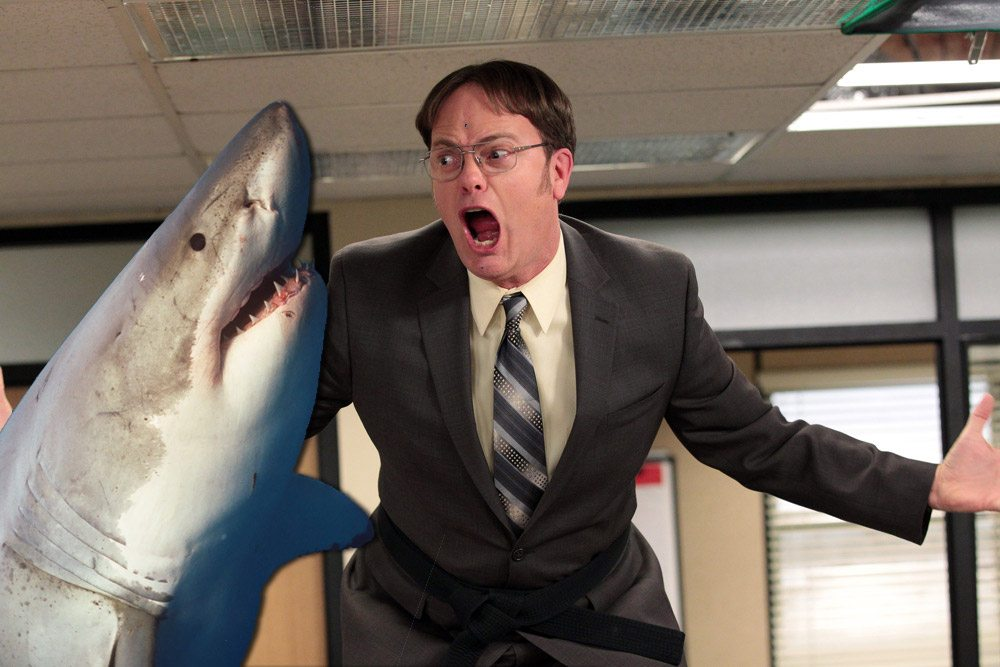 Image result for the meg rainn wilson