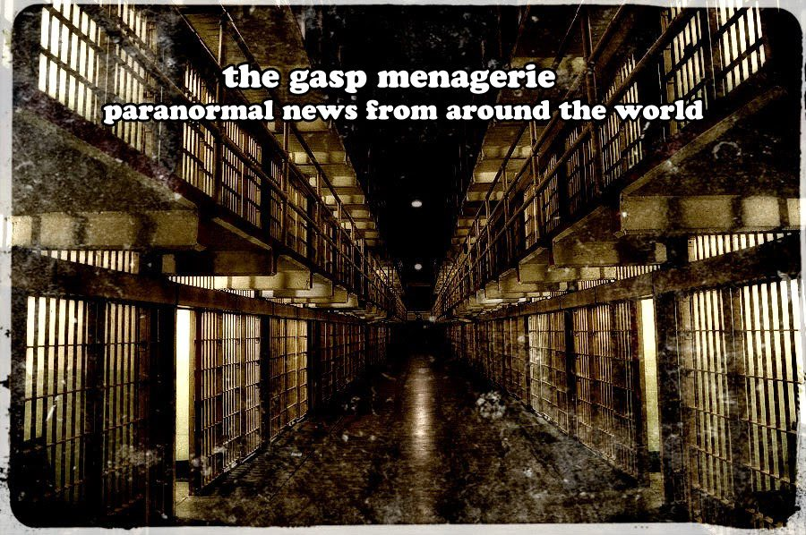 gasp menagerie new - Recordings From Another Dimension In The Gasp Menagerie
