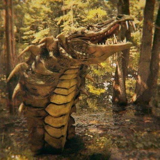 cobragator 1 - Exclusive Images of the Cobragator in Action!