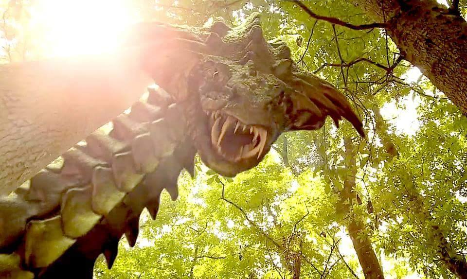 cobragator 4 - Exclusive Images of the Cobragator in Action!