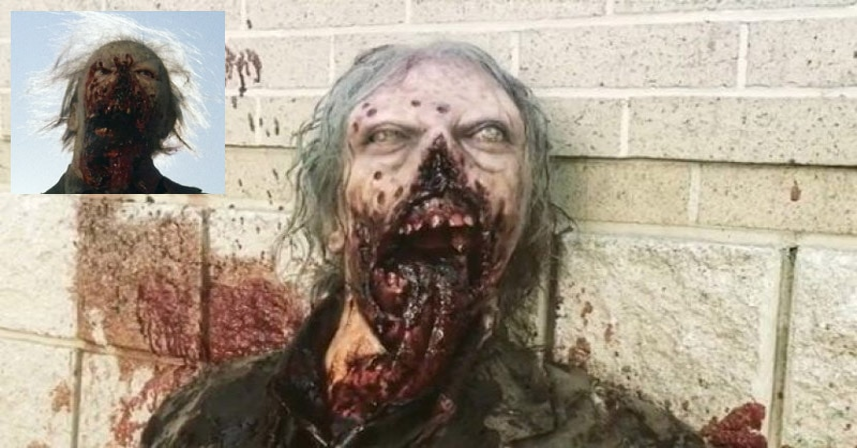 the walking dead tribute zombie gallery dread central