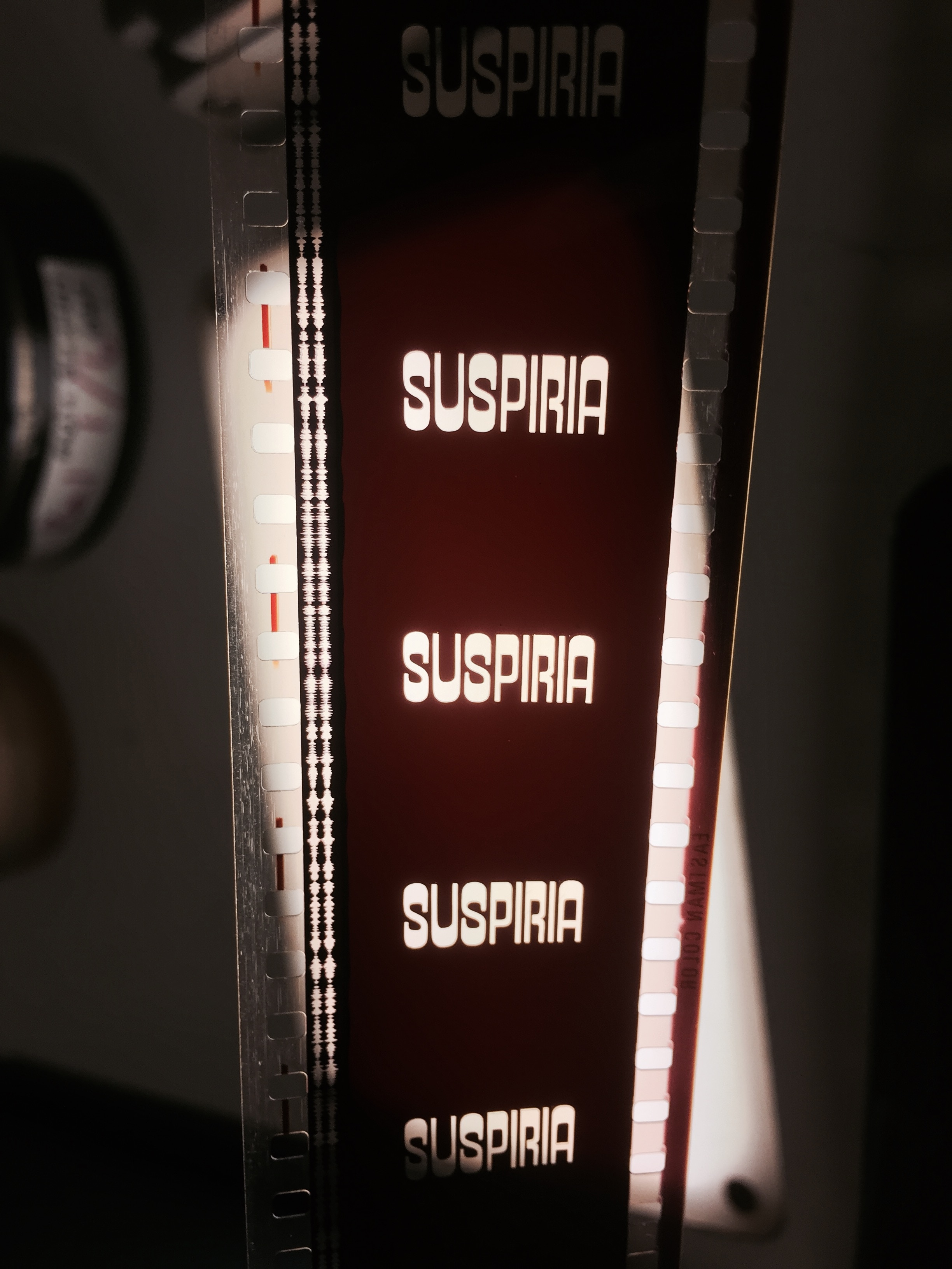Suspiria pic 1 - Uncut Italian 35MM Print of Suspiria Found and Will Be Projected Across the US