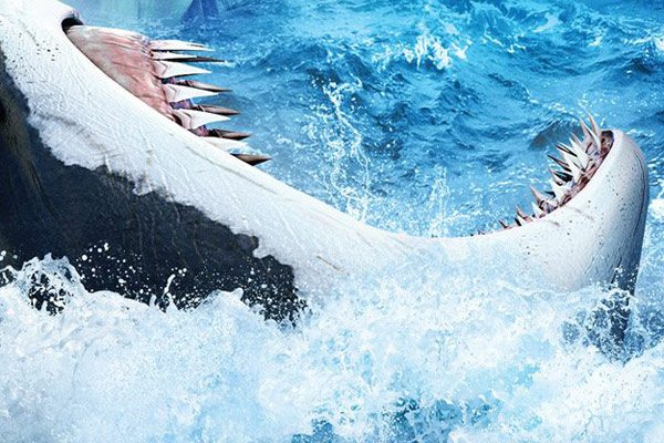 shark 48 meters down - 48 Meters Down Set for June 2019 Release by Entertainment Studios Motion Pictures