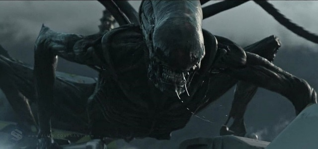Xenomorph - Ridley Scott Says the Alien Franchise Is Done With the Xenomorph