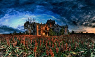 spooky farm 400x240 - 12 Spooky Video Game Farms To Celebrate Your Thanksgiving
