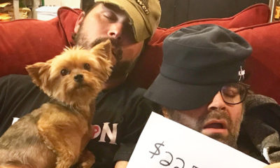 yorkies telethons 400x240 - The Movie Crypt Raises $22,574.68 to Save Yorkies With YOUR Help