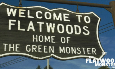flatwoods monster resize 1.jpg 1 400x240 - The Flatwoods Monster: A Legacy of Fear Documentary Debuts in April
