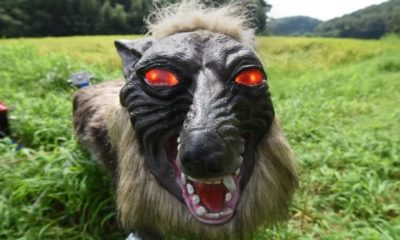 super monster wolf8 400x240 - Japanese Farmers Are Using Terrifying Robot Wolves to Guard Their Crops