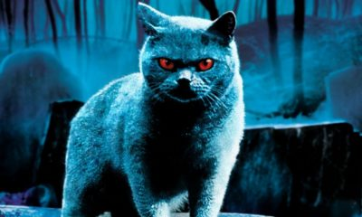 Pet Sematary 1 400x240 - Epic Stephen King DVD Collection Coming Soon For $20