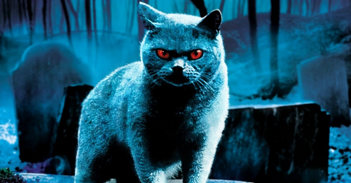 Pet Sematary 1 - Epic Stephen King DVD Collection Coming Soon For $20