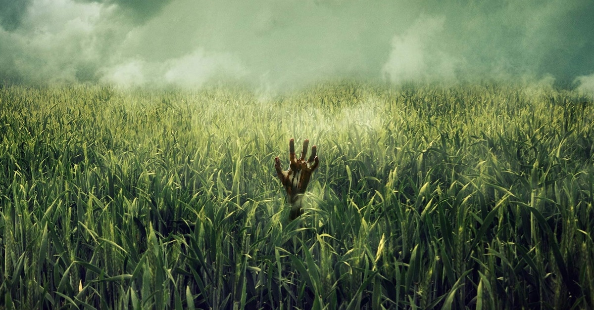 In the Tall Grass poster - Fantastic Fest 2019: IN THE TALL GRASS Review - Fits Neatly Into Stephen King's Established Multiverse