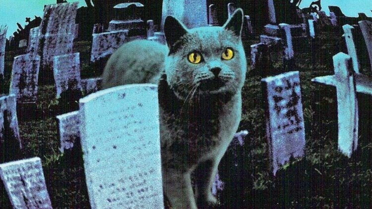 petsematarybanner1200x627 750x422 - Exclusive: Jeff Buhler On PET SEMATARY, THE GRUDGE Remakes; Slash's THE HELL WITHIN; and More!