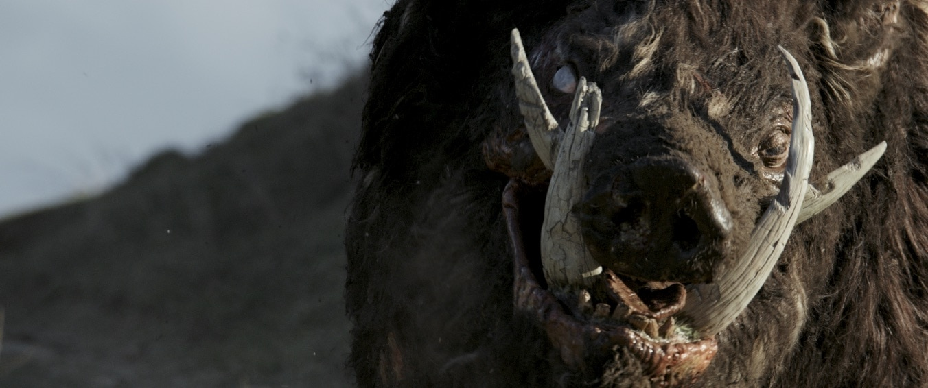 Boar 2 - FrightFest 2018: 19th Year's Line-Up Revealed With 20 World Premieres!