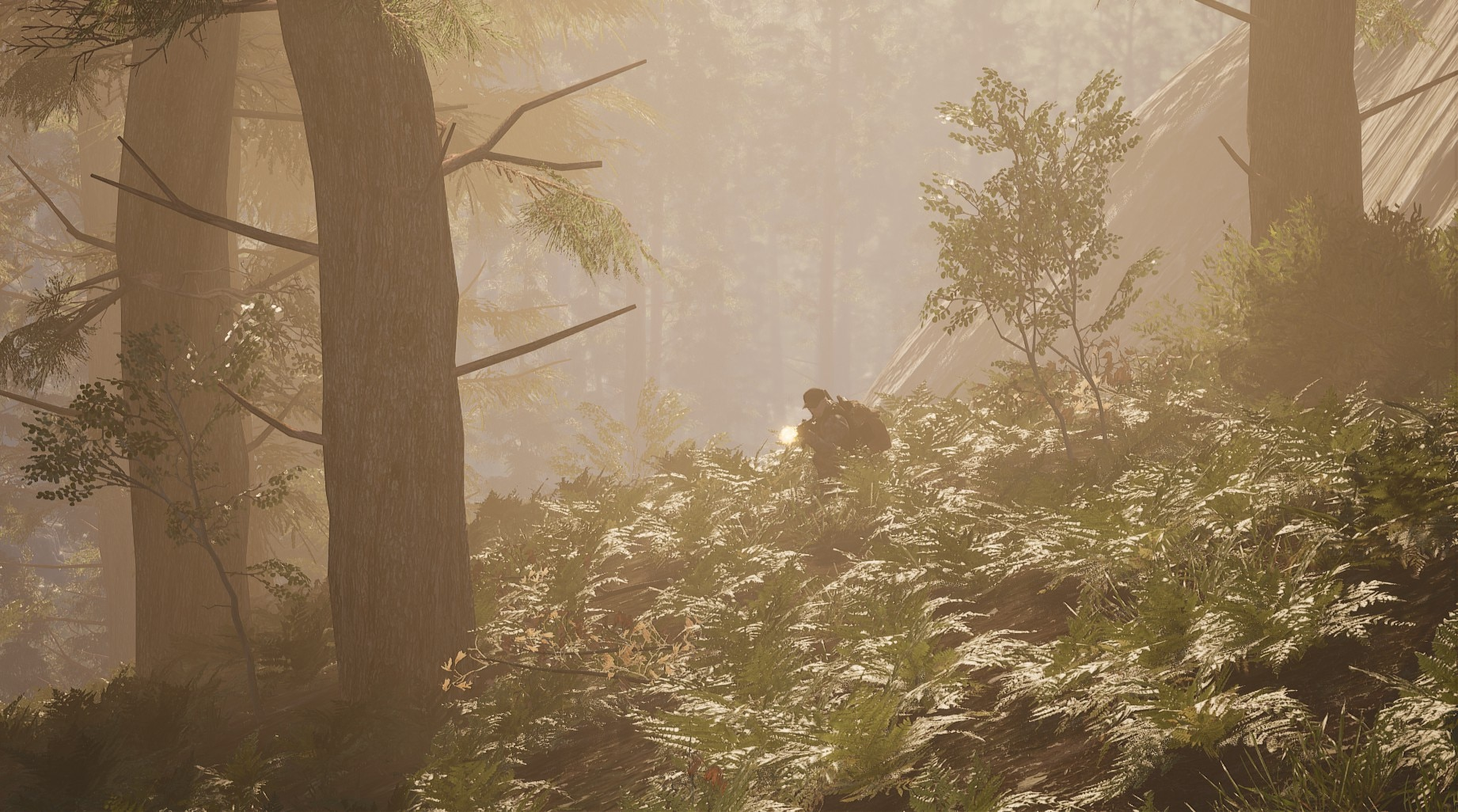 SCUM Hazy Forest - SCUM Is An Insane Game Made By Croatian Madmen
