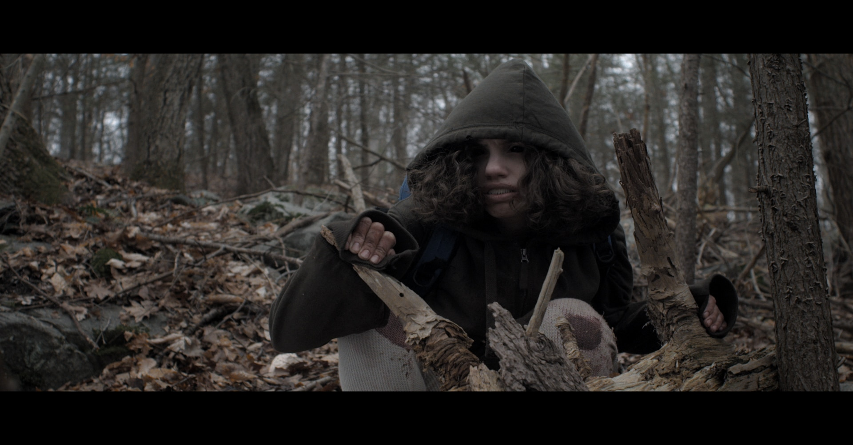 The Dark - Fantasia 2018: Zena's Ten Most Anticipated Horror Films