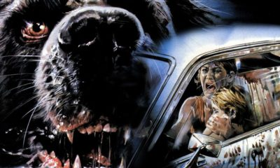 cujo 1200 1200 675 675 crop 000000 400x240 - Snoochie-Poochies? Kevin Smith Was Asked to Remake Stephen King's CUJO