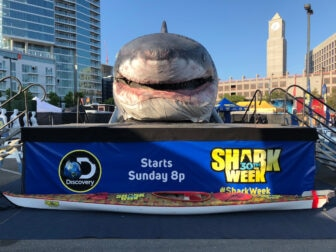 shark week 3 336x252 - #SDCC18: We Have SUCH Sights to Show You