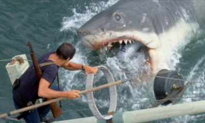 jawsbanner1200x627 400x240 - Bruce, The Shark From JAWS, Is Being Restored To His Former Glory