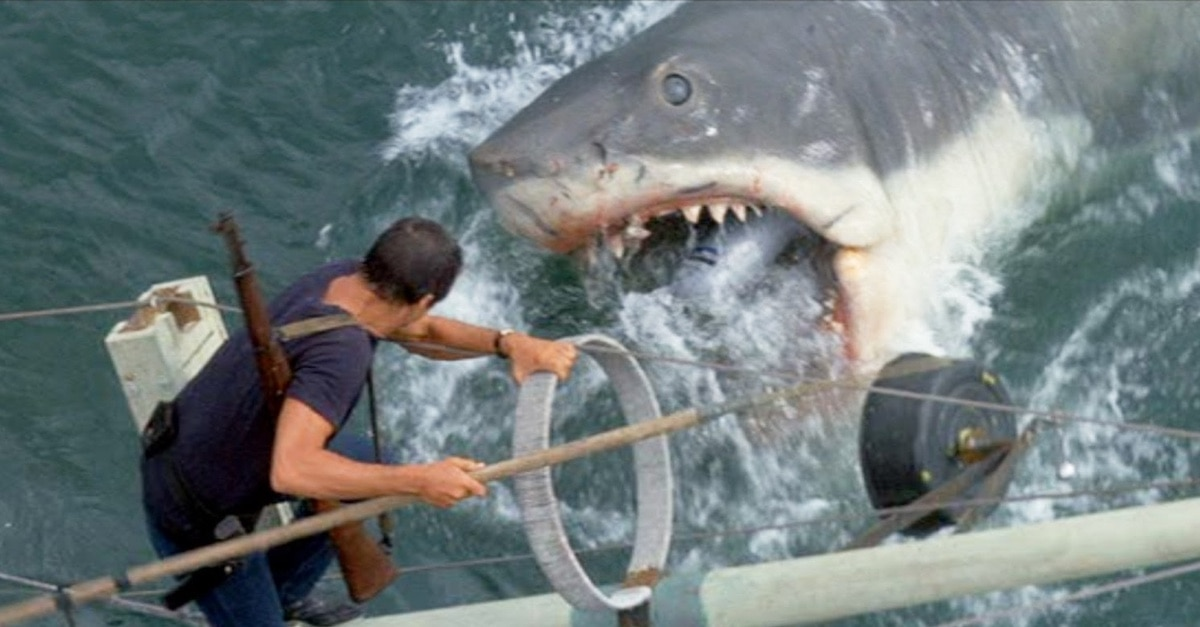 jawsbanner1200x627 - Bruce, The Shark From JAWS, Is Being Restored To His Former Glory