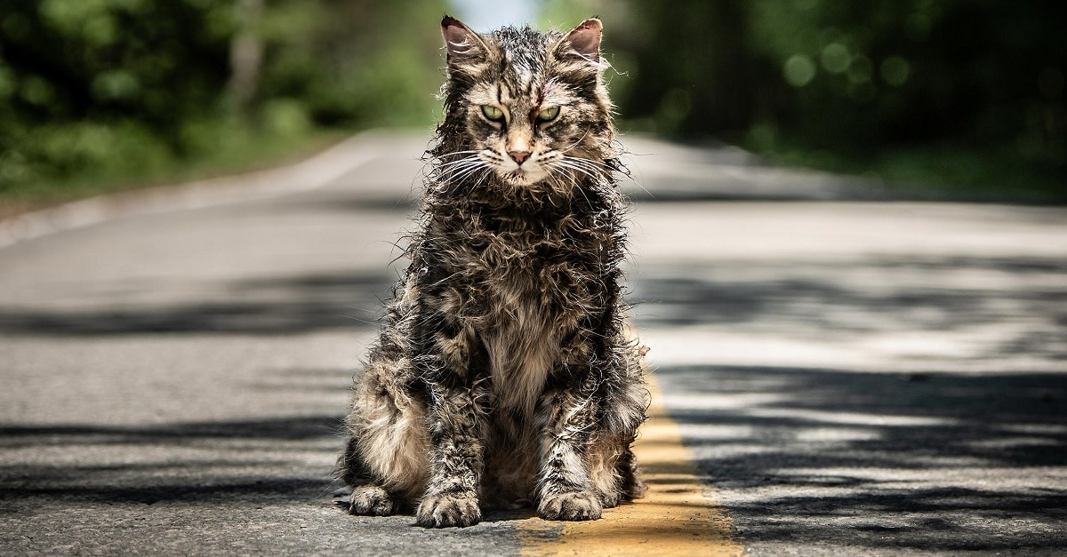 Image result for pet sematary 2019