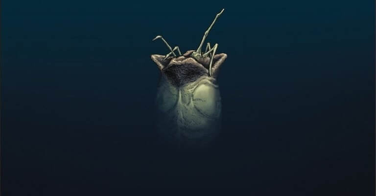alien 3 comic xenomorph egg 1 - William Gibson's Original ALIEN 3 Screenplay Adapted Into Comic Series